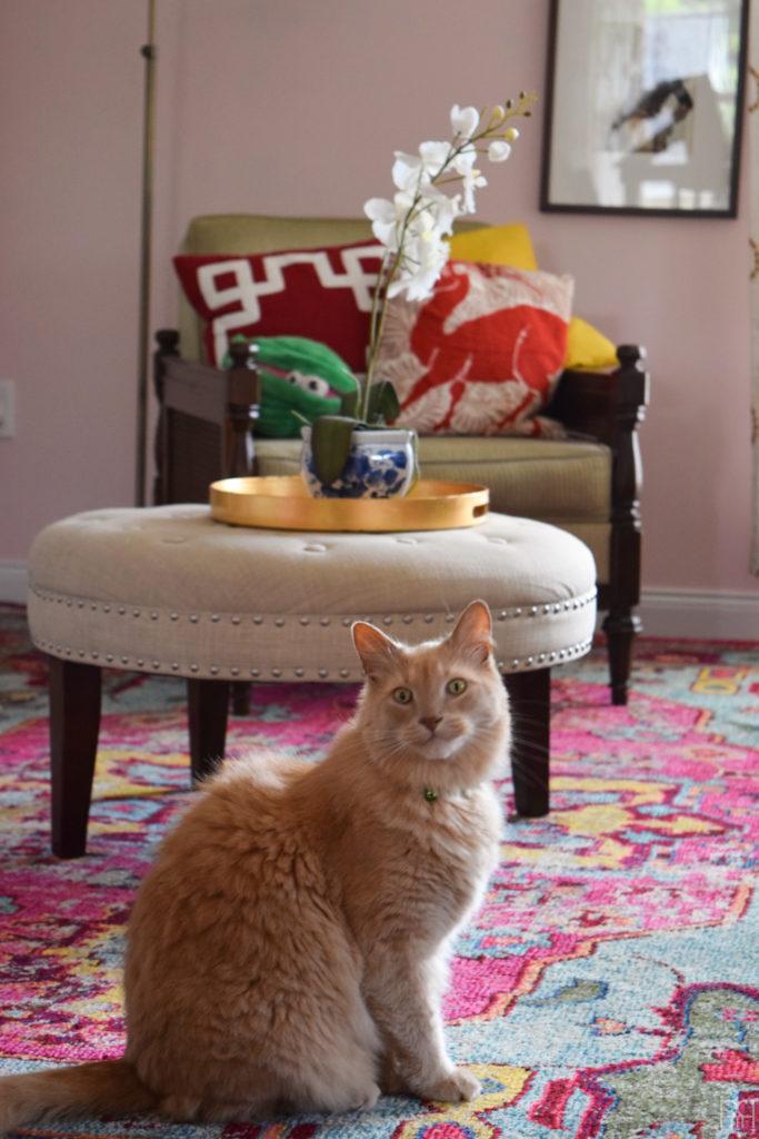 The Family Room ottomon