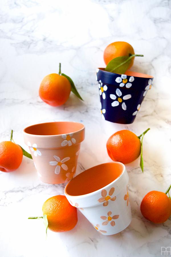 geschilderde terracotta pot