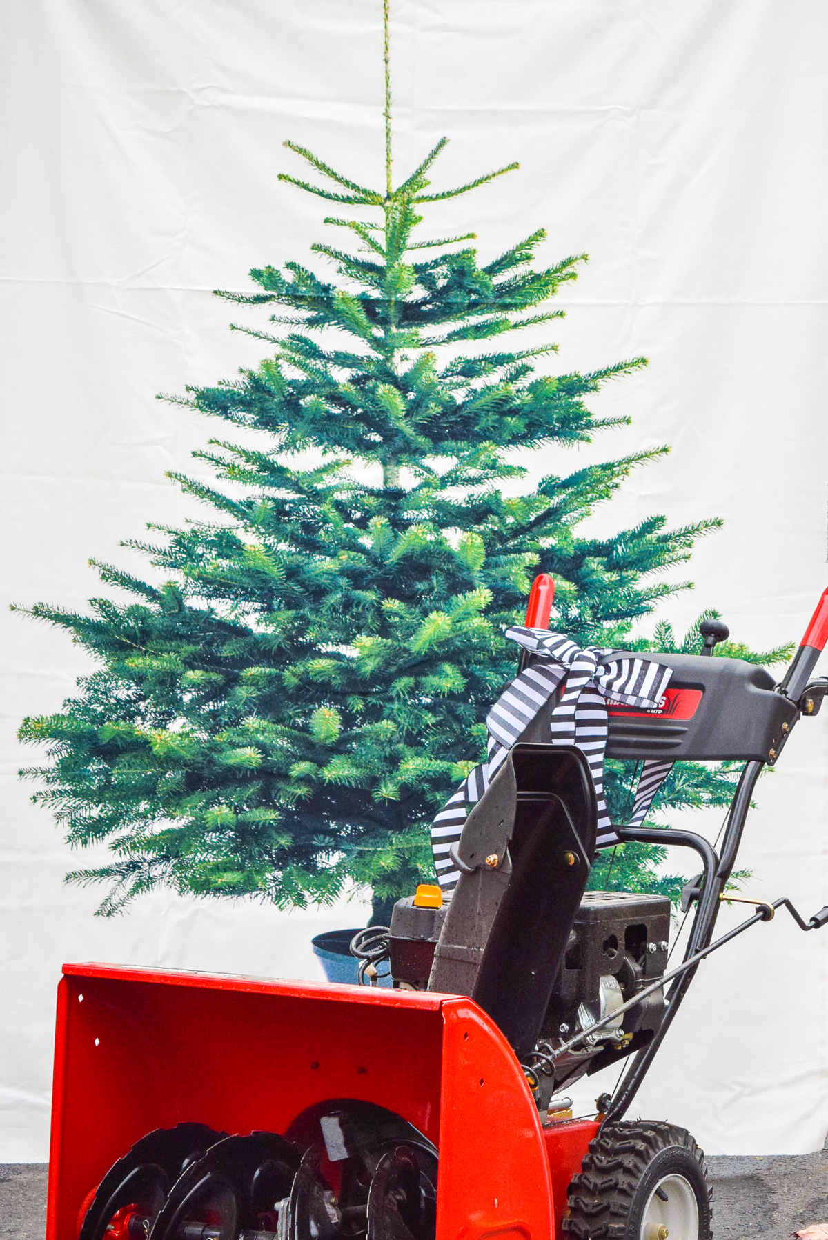 Prepping (your snowblower) for Winter, because how much will it suck to find out there's a problem, during the first storm of the year?! Grab my 5 tips on how to winterize your snow thrower.